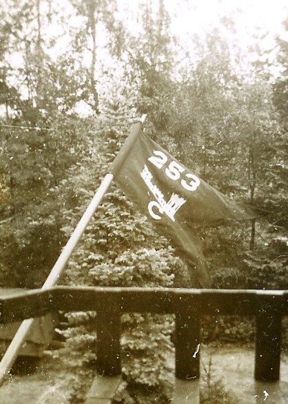 253 Combat Engr Battalion pennant.jpg